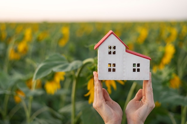 Modèle de maison entre les mains des femmes. concept de maisons écologiques. tournesols sur fond. serres.