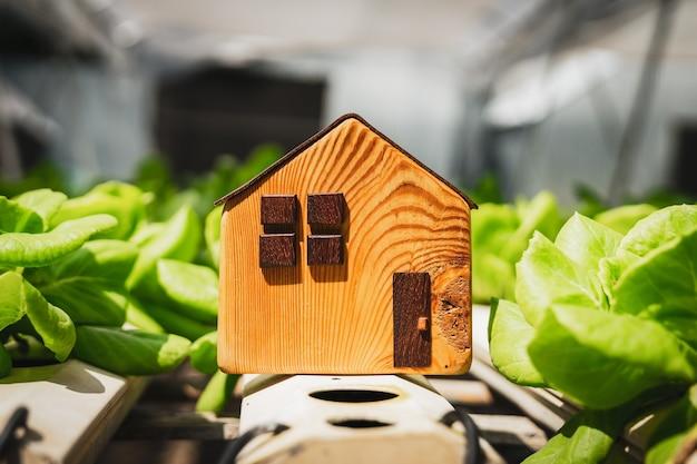 Modèle de maison avec des légumes biologiques frais cultivés en utilisant l'agriculture hydroponique
