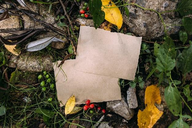 Modèle de maquette de papier artisanal sur le fond de la nature d'automne magique de la forêt