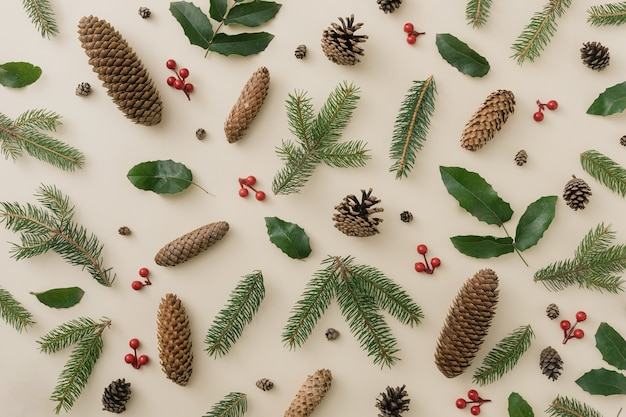 Modèle naturel d'hiver créatif avec des pommes de pin et des baies. notion de nature. carte de voeux florale.