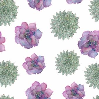 Modèle de plantes succulentes de fleurs tropicales, dessin à la main aquarelle