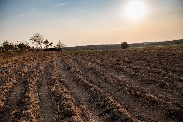 Modèle de rangée de sillons dans un champ préparé pour la plantation de cultures.