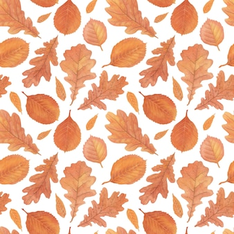 Modèle sans couture aquarelle de feuillage automne dessiné à la main et crayons