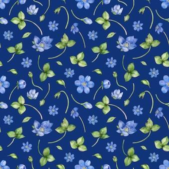 Modèle sans couture aquarelle avec fleur d'hepatica nobilis sur un bleu foncé