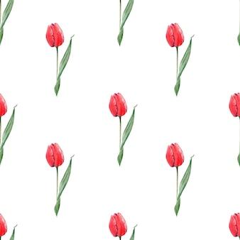 Modèle sans couture aquarelle avec des tulipes rouges élégantes. bourgeons, fleurs et feuilles