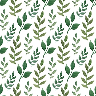 Modèle sans couture aquarelle vert. peut être utilisé pour l'emballage et la conception d'emballage.