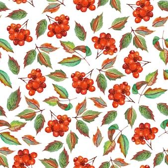 Modèle sans couture d'automne avec des baies de sorbier et des feuilles illustration aquarelle isolée sur blanc