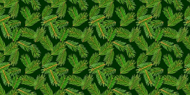 Modèle sans couture de branches arbre sapin, branche de pin, conifère de noël isolé sur vert