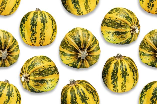Modèle sans couture de citrouilles. citrouilles jaune-vert. fond d'automne. halloween. pour la conception et l'impression.