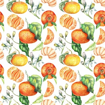 Modèle sans couture de clémentine orange peint aquarelle