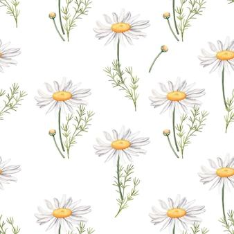 Modèle sans couture avec des feuilles et des fleurs de camomille