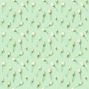 Modèle sans couture de fleurs sèches naturelles sur un design floral vert tendre