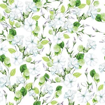 Modèle sans couture de mariage aquarelle élégance avec des fleurs de liseron.