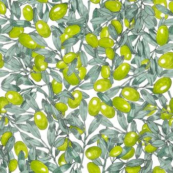 Modèle sans couture d'olives grecques