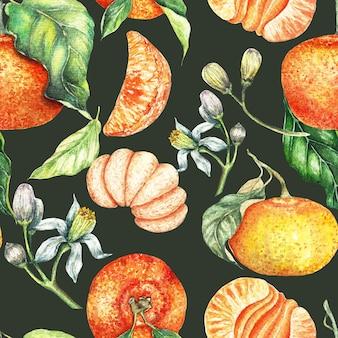 Modèle sans couture oranges et clémentines dessinés à la main