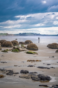 Moeraki Boulders En Nouvelle-zélande Photo Premium