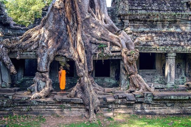 Les moines et les arbres qui poussent hors du temple de ta prohm, angkor wat au cambodge.