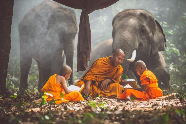 Des moines thaïlandais étudient dans la jungle avec des éléphants