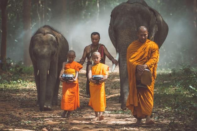 Moines thaïlandais marchant dans la jungle avec des éléphants