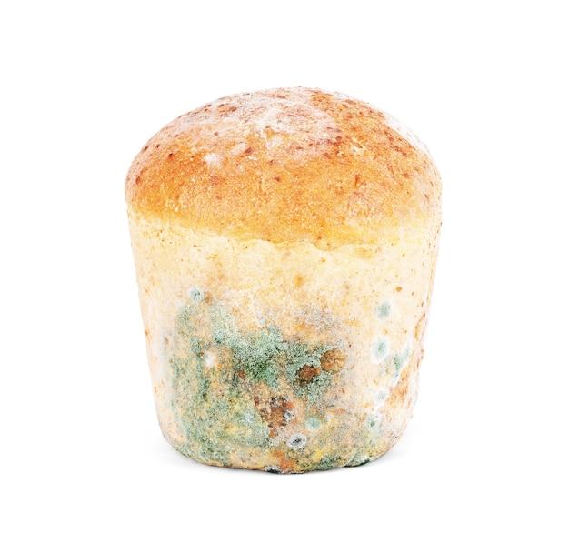 Moisissure sur du pain sur fond blanc. isolé