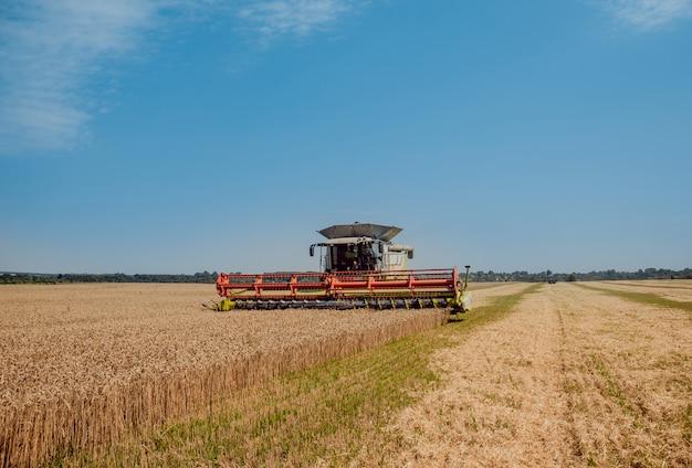 Moissonneuse-batteuse en action sur un champ de blé. processus de récolte d'une récolte mûre.