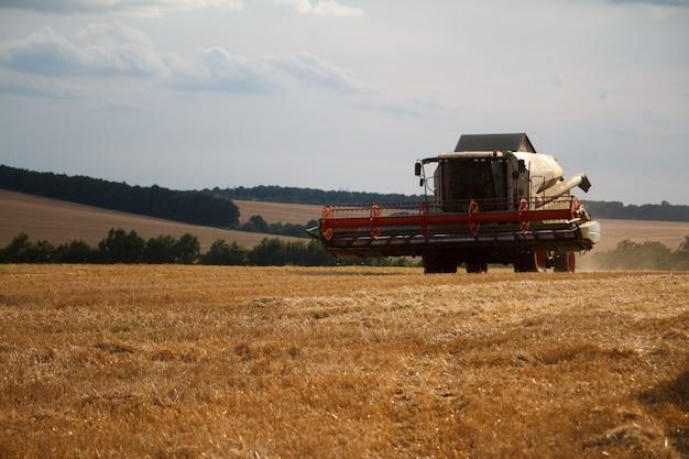 La moissonneuse-batteuse associée à un mécanisme surélevé chevauche le chaume après la récolte des champs de blé pour la récolte