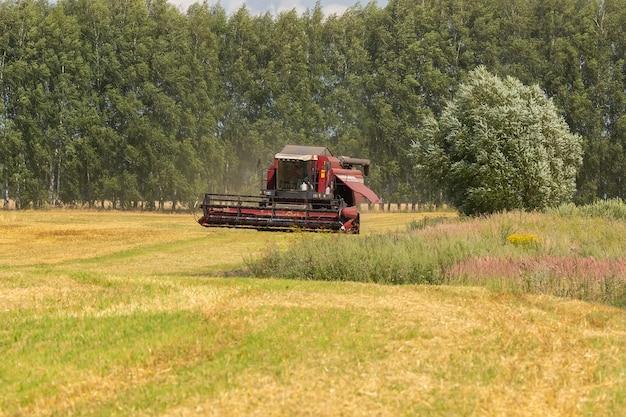 Moissonneuse-batteuse sur un champ de blé