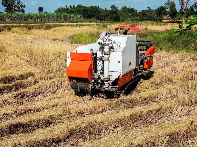 La moissonneuse-batteuse effectue des travaux agricoles dans les champs.
