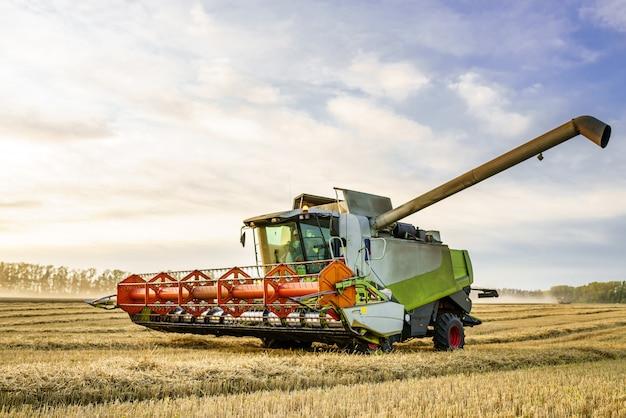 Moissonneuse-batteuse récolte de blé doré mûr sur le terrain