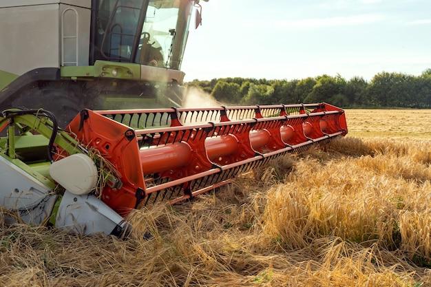 La moissonneuse-batteuse récolte du blé mûr