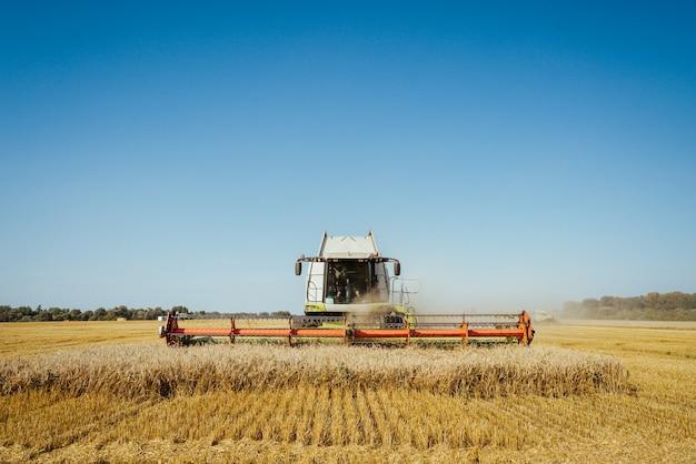 La moissonneuse-batteuse récolte des épis mûrs de blé mûr de champ d'or sur le ciel orange nuageux au coucher du soleil