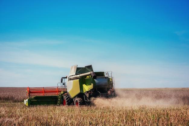 Moissonneuse-batteuse de travail dans le domaine du blé