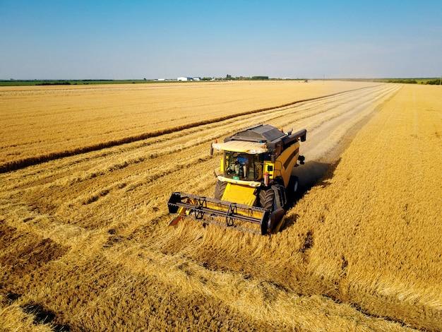 Moissonneuse-batteuse travaillant dans le champ de blé par une journée ensoleillée.