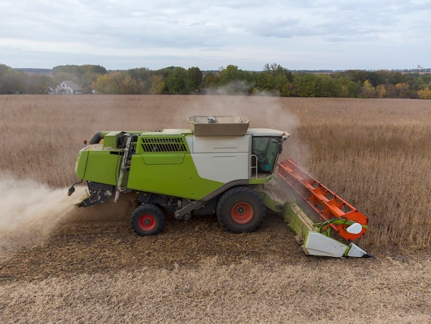 La moissonneuse-batteuse verte dans le champ bat le grain