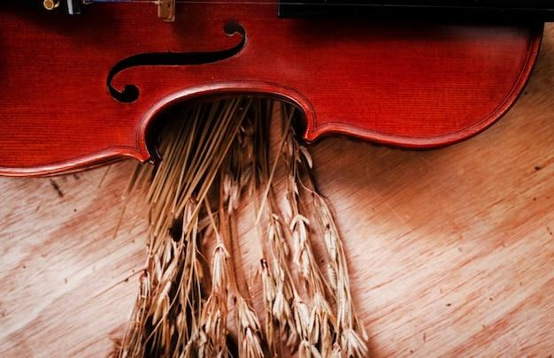 La moitié avant du violon classique posé à côté d'une fleur séchée, sur une planche de bois