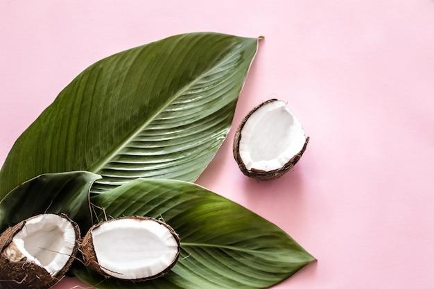 Moitiés de noix de coco et feuilles tropicales
