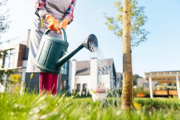 Moment idéal. joyeuse belle dame motivée arrosant les arbres tout en passant du temps dans le jardin