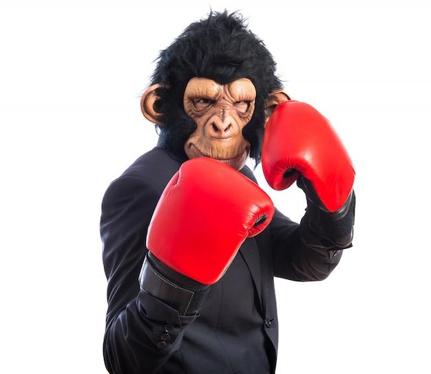 Monkey man avec des gants de boxe