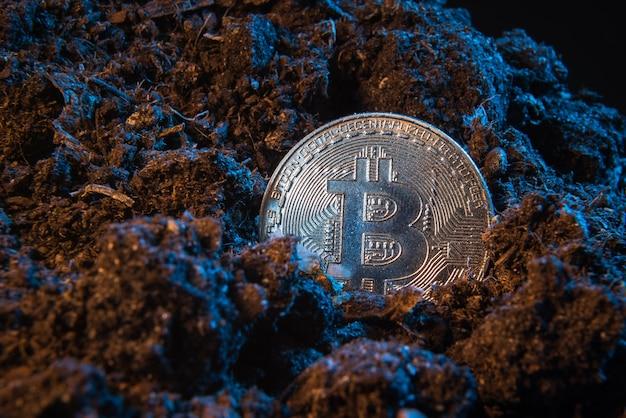 Monnaie crypto minière - bitcoin. pièce d'argent en ligne dans le sol de terre.
