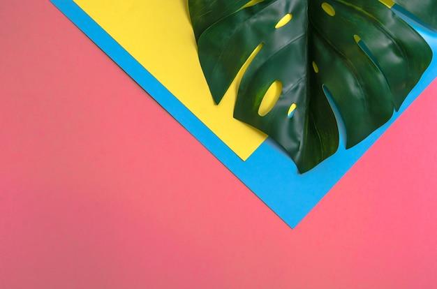 Monstera de feuilles tropicales sur trois tons de couleur unie jaune, rose et bleu clair.