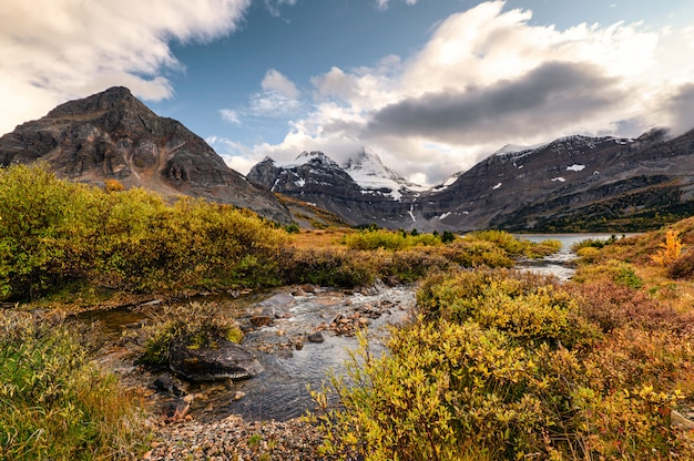 Mont assiniboine avec ruisseau qui coule dans la forêt d'automne au parc provincial