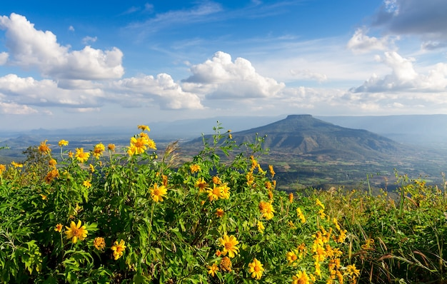 Mont fuji dans la province de loei, thaïlande. this's mountain ressemble au mont fuji au japon