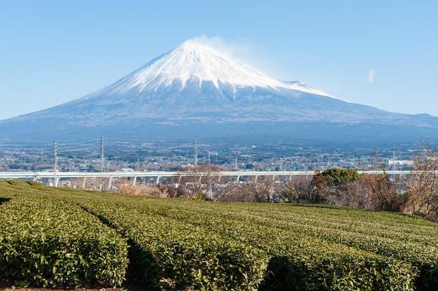 Mont fuji avec neige et plantation de thé vert dans la ville de fujinomiya, préfecture de shizuoka au japon