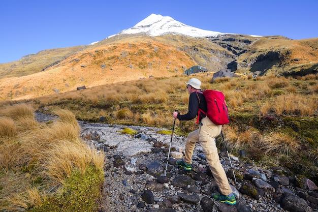 Mont taranaki / mont egmont dans le parc national d'egmont, île du nord, nouvelle-zélande. beaux paysages naturels