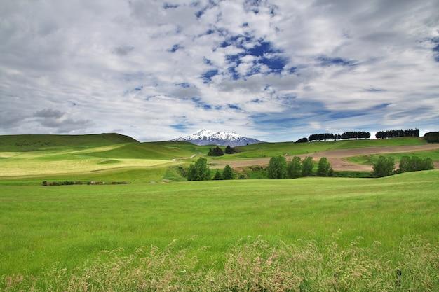 La montagne dans le parc national de tongariro, nouvelle-zélande