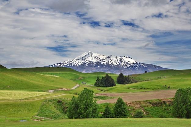 Montagne dans le parc national de tongariro, nouvelle zélande