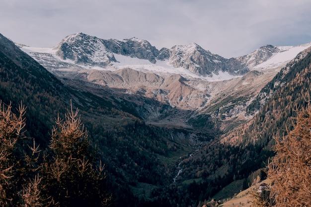 Montagne enneigée