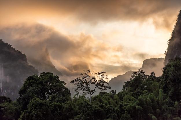 Montagne et forêt avec rayon de lumière le matin