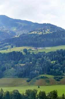 Montagne avec forêt verte et champs d'herbe en autriche