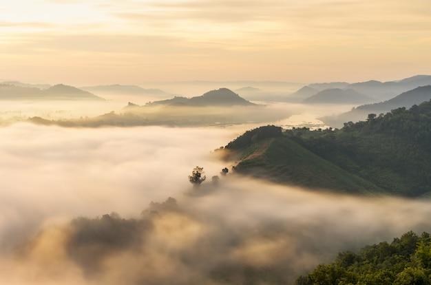 Montagne avec paysage de brouillard le matin au phu dup duk, nong khai, thaïlande.